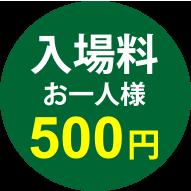 入場料お一人様500円