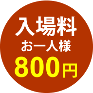 入場料お一人様800円